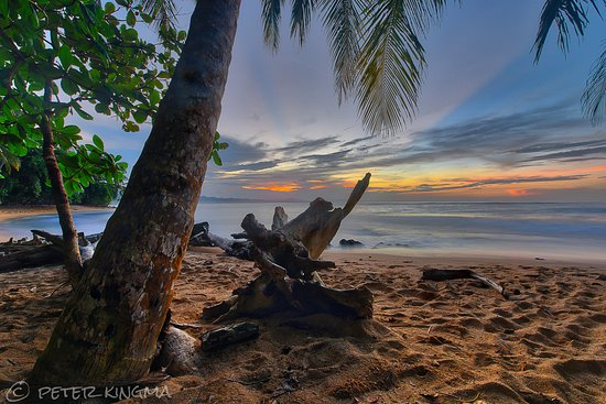 Manzanillo, Costa Rica: Beach in front of lodge at sunset