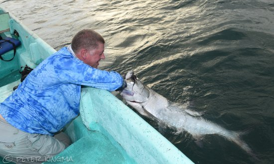 Tarponville: My first Tarpon, and my arms were sore...