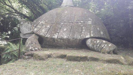 Bomarzo, Italie : Un'immagine della tartaruga.