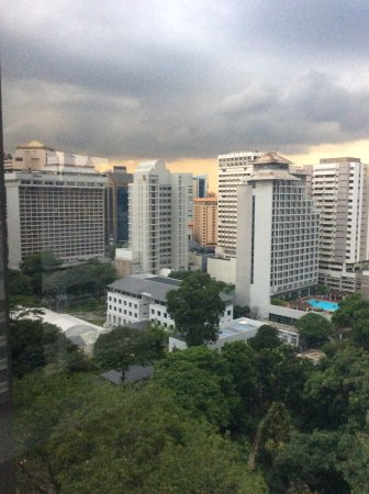 8 on Claymore Serviced Residences: Room view looking at THAI Embassy and Hilton + Pan Pacific Hotel