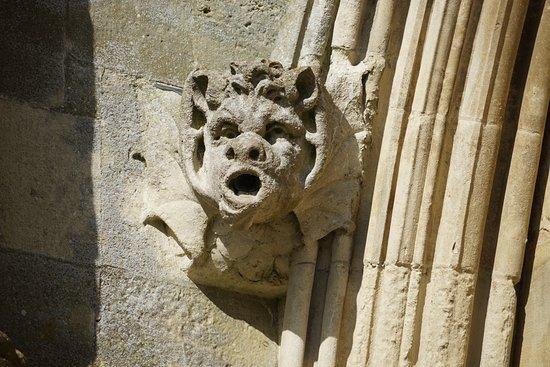 Salisbury Cathedral照片