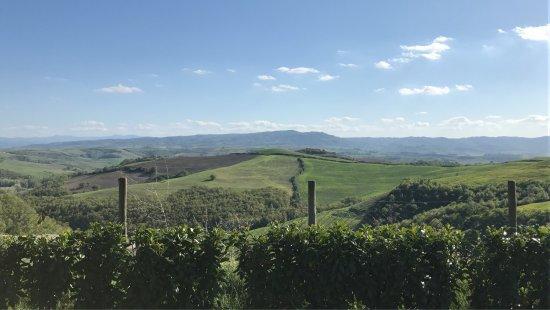 San Giovanni d'Asso, Italia: photo1.jpg