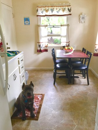 Clearlake Oaks, CA: kitchen Cabin #2