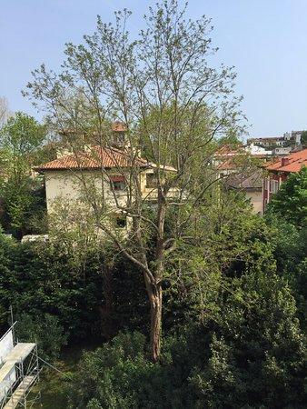Grande Albergo Ausonia & Hungaria: Room view
