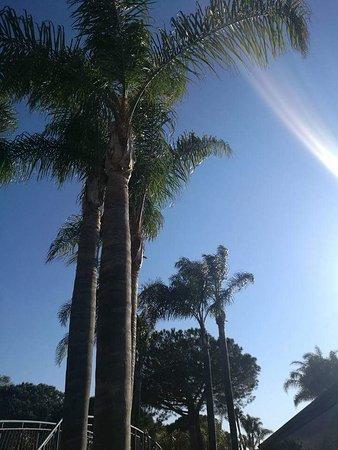 Villaggio Oasis: FB_IMG_1493147404669_large.jpg