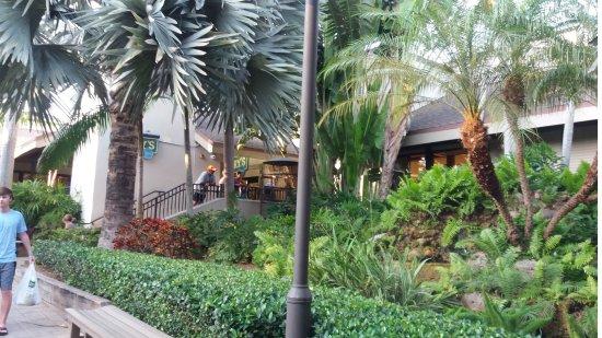 Vegan Restaurants Sanibel Island