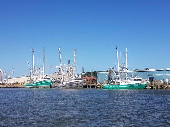 Fernandina Beach Sailing