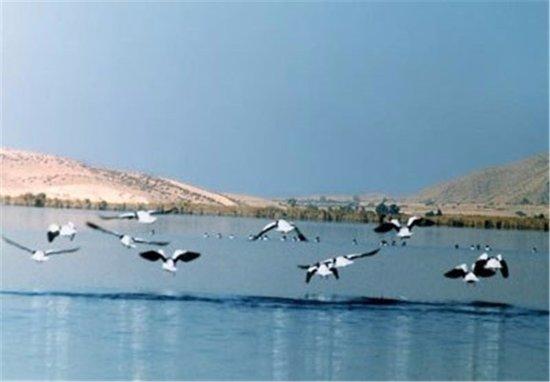 Kazerun, إيران: Parishan Lake
