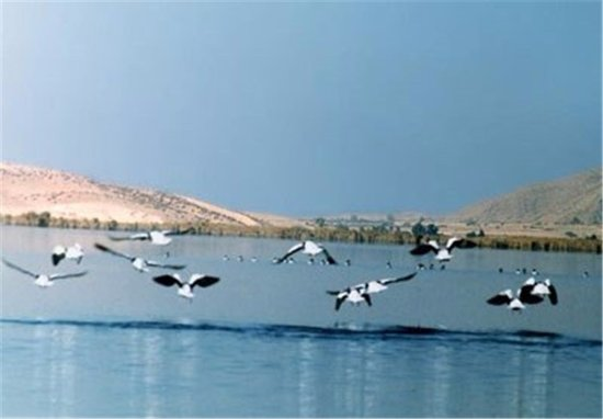 Kazerun, Iran: Parishan Lake