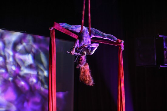 The Janice Martin Cirque Show