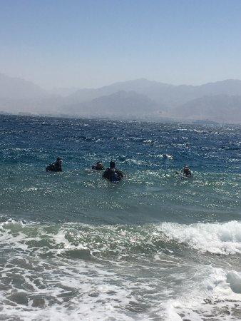 Shulamit's Eilat Diving Adventures Photo