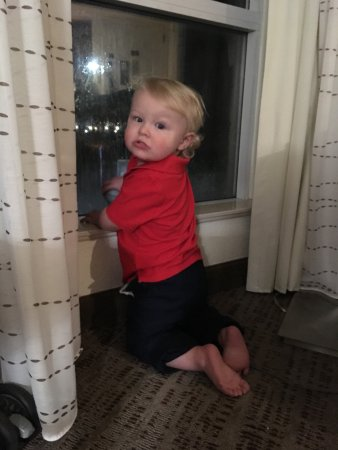 Pleasant Hill, CA: Grandson looking out large window. Staff was so cute with him.