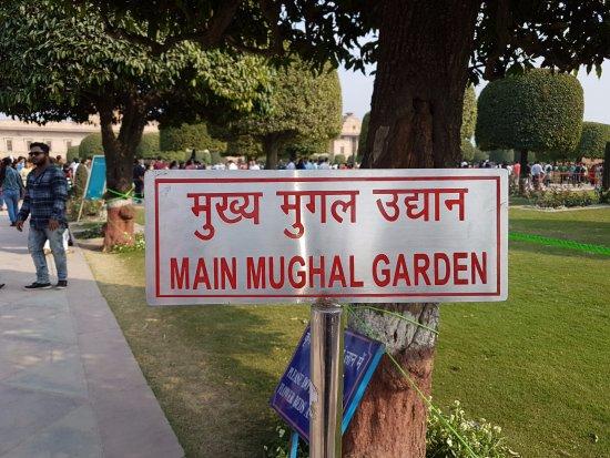 Creatieve bloemenkunst picture of mughal garden new Mughal garden booking