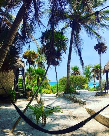 Foto de Playa Esperanza