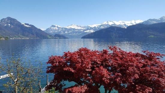 Weggis, Zwitserland: Ausblick vom Balkon