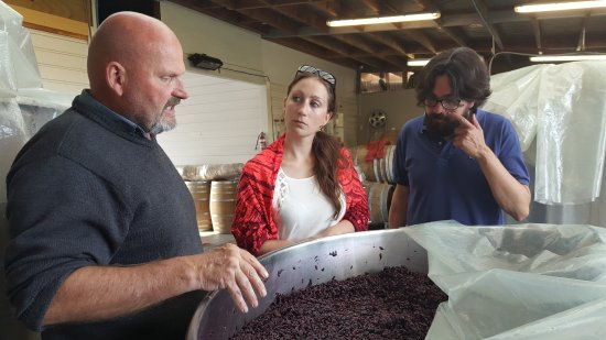 Martinborough, Новая Зеландия: Shaun Brown at Muirlea Rise explaining the finer points of making Pinot Noir