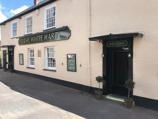 Woodbury, UK: The White Hart