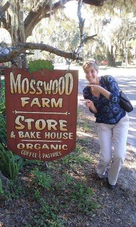 Micanopy, FL: Mosswood Farm Store!