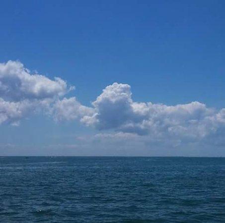 Hudson, FL: FB_IMG_1466381901732_large.jpg
