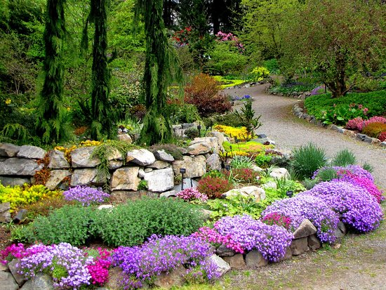 Photo of a flower bed at the hcp gardens in victoria bc canada the gardens at hcp photo of a flower bed at the hcp gardens in victoria thecheapjerseys Image collections