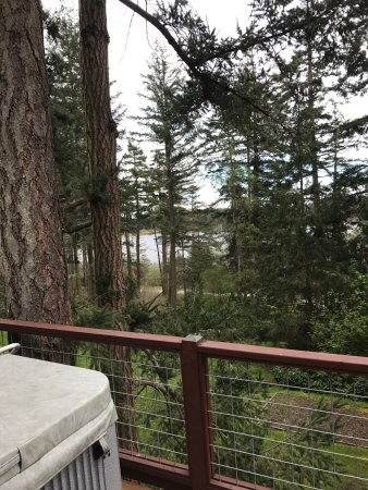 Inn to the Woods: View from our room and private hot tub