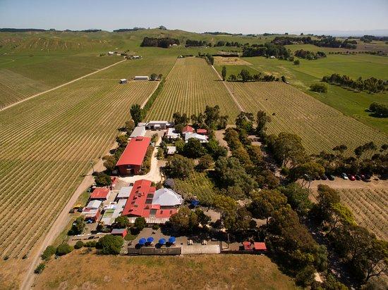 Te Awanga, นิวซีแลนด์: Clearview Estate Winery, Restaurant, Cellar Door & Vineyards