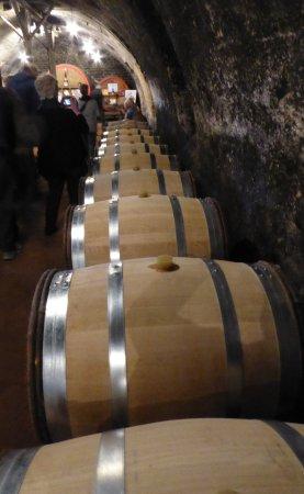 Quincie-en-Beaujolais, Fransa: Inside the Cask Room