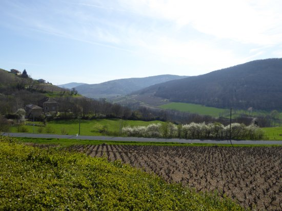 Quincie-en-Beaujolais, France: View of vineyards from the Chateau