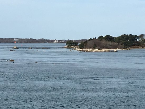 Woods Hole, MA: View from ferry