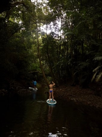 Palm Cove, Australia: Stand up paddle boarding