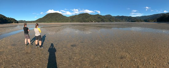 Abel Tasman National Park, Neuseeland: Waiting for the tide to drop before crossing the inlet at Awaroa