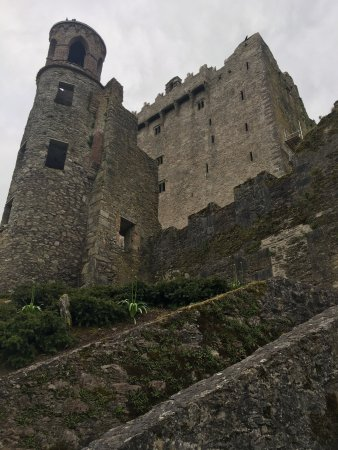 Blarney Castle & Gardens: photo4.jpg