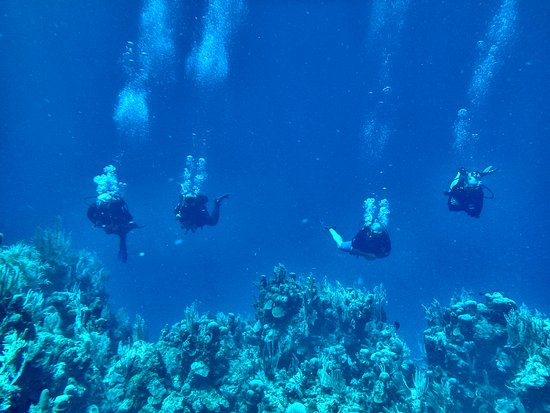West End, Honduras: The joys of diving