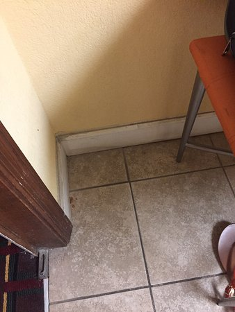 Aiken, Carolina del Sur: filthy tiled floor and wall trim