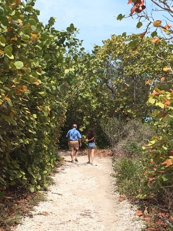 Bahia Honda State Park and Beach: photo7.jpg