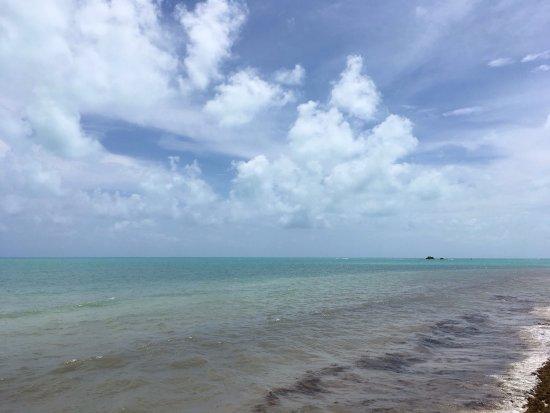 Bahia Honda State Park and Beach: photo8.jpg