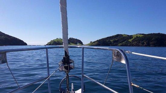 Bay of Islands照片
