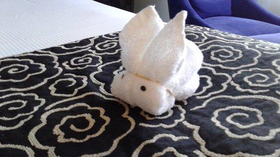 Amora Hotel Wellington: Face Cloth Rabbit 1