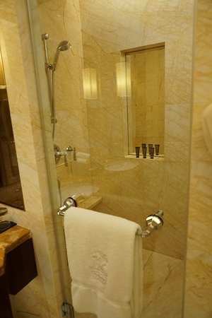 Rain Drop Or Handheld Shower Picture Of The Ritz Carlton