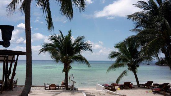 Green Papaya Resort Photo