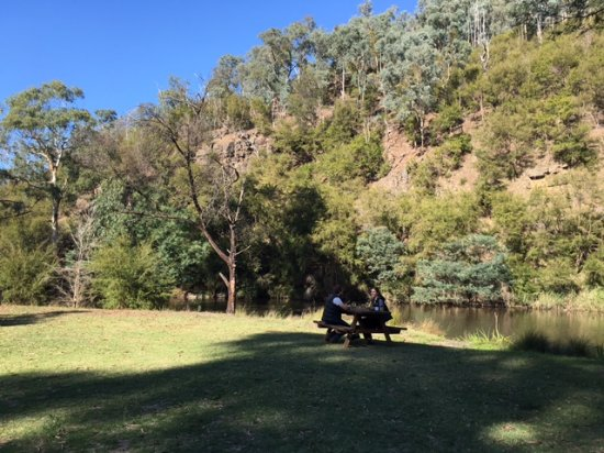 Picnic grounds - Yering Gorge Cottages