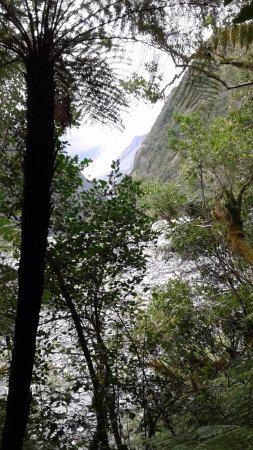 Fox Glacier, Selandia Baru: Can you see it?