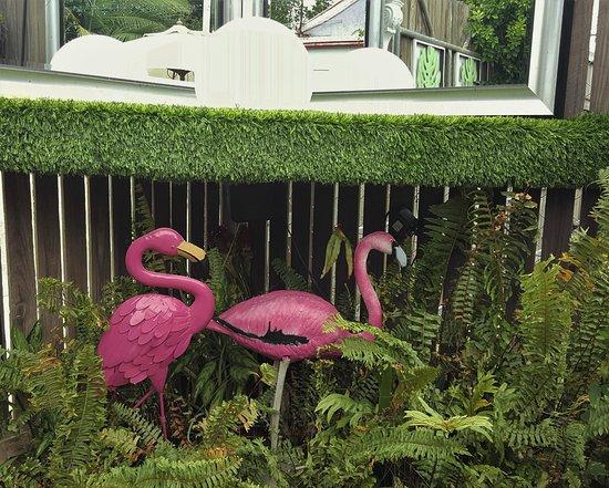 garden Picture of Wayne Adeles Garden of Eating Townsville