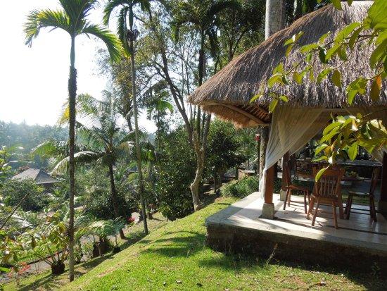 Alam Puri Art Museum Resort Spa Tripadvisor