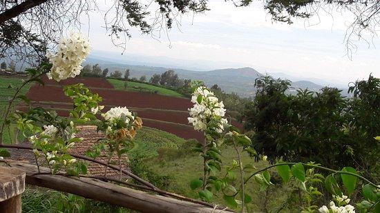 Karatu, Τανζανία: Uitzicht vanaf het terras