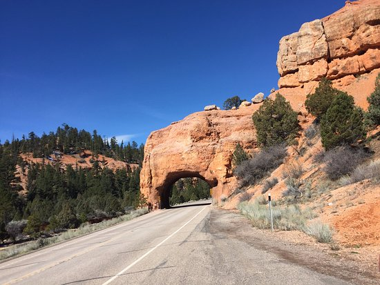 Седар-Сити, Юта: Red Canyon in Dixie National Forest - the road tunnel