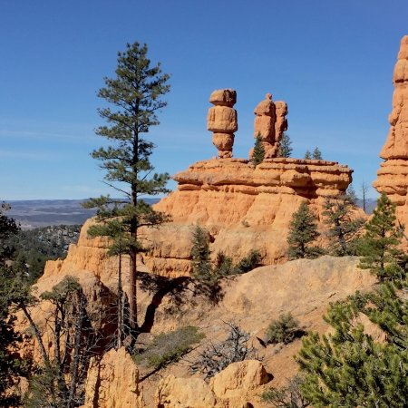 Седар-Сити, Юта: Red Canyon in Dixie National Forest (4)