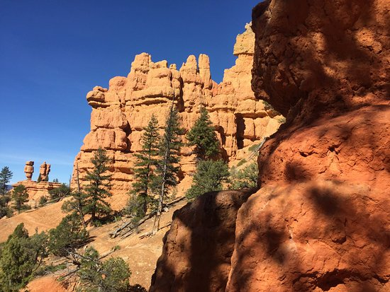 Panguitch, UT: Great views at Red Canyon