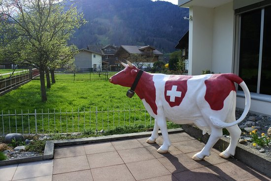 Wilderswil, Zwitserland: in front of lobby hotel