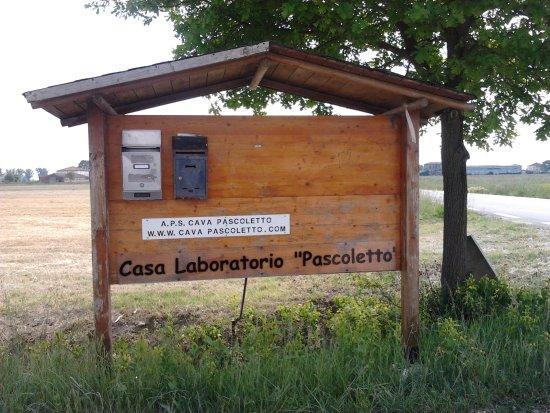 Bosco Pascoletto